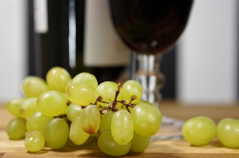 Винари из Риђице презадовољни годином