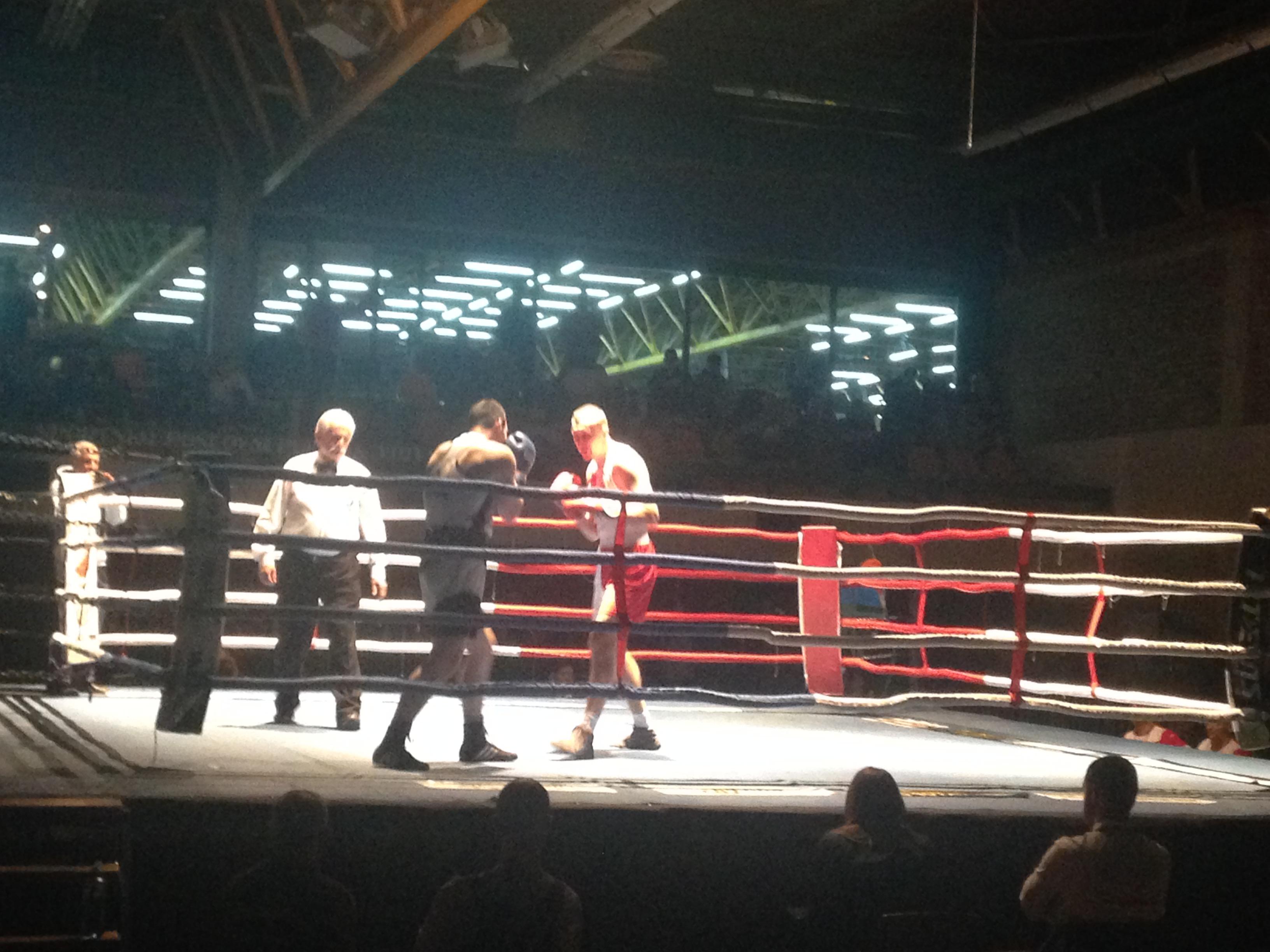 Praznik boksa u Novom Sadu