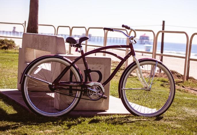 Svetski dan bicikla koji se proteklih godina