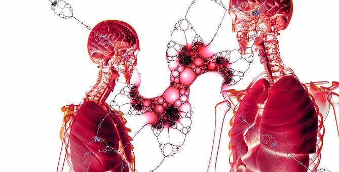 U Vojvodini oko 1.600 ljudi godišnje oboli od karcinoma pluća