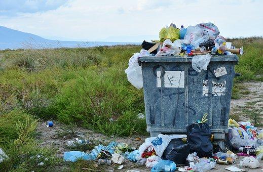 Godišnje u smeće bacimo čak 250 hiljada tona hrane!