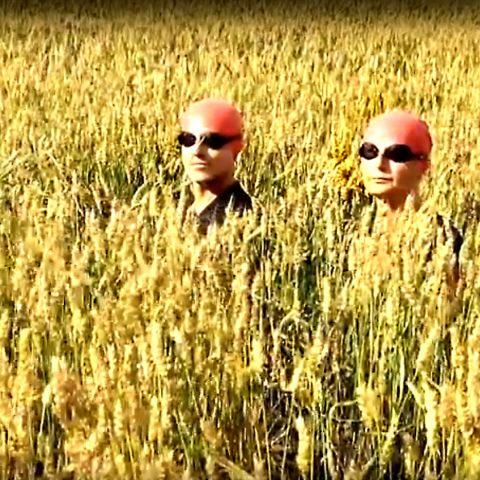"""Ciklus SVET DIGITALNE UMETNOSTI – Festival """"Trenuci videa"""" 2018, Francuska, 06. decembra u Američkom kutku"""